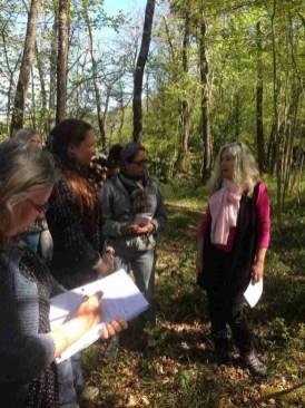 Medicinal Plant Workshop Walk