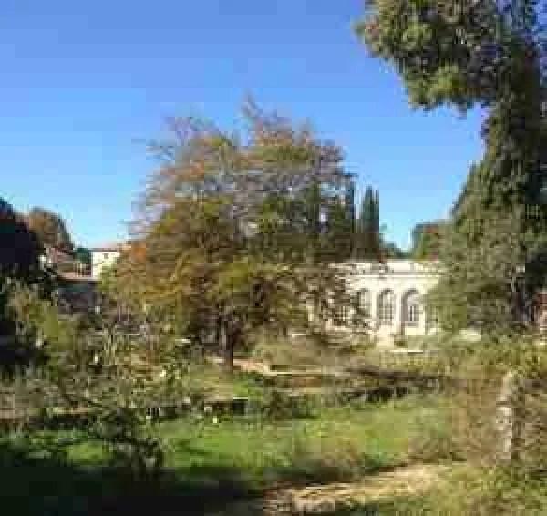 Jardin des plantes de montpellier thyme breaks - Jardin des plantes de montpellier ...