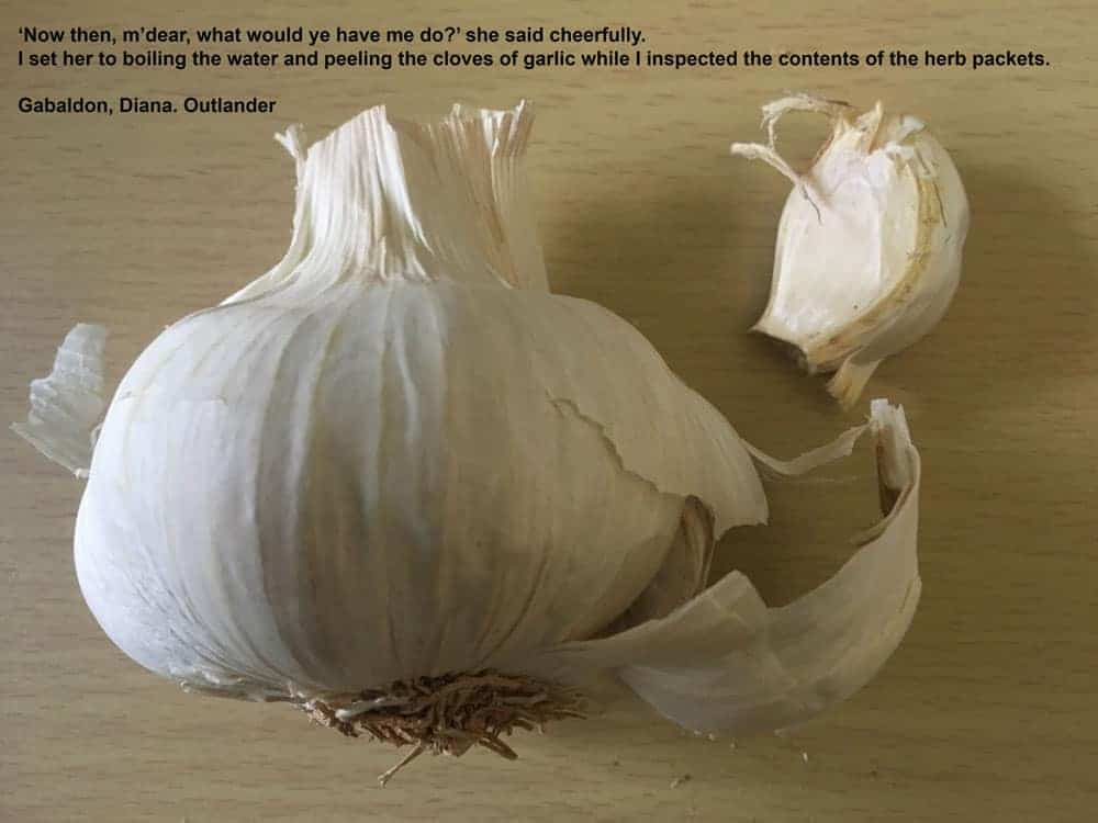 Garlic and the Outlander Medicinal Uses