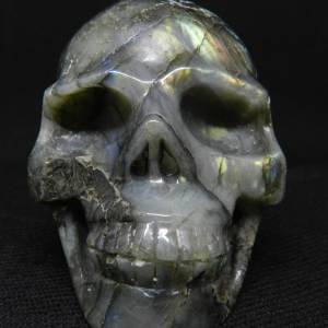 Face view of Labradorite skull