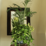 How To Design Indoor Containers