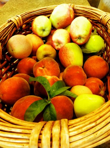 Peach and apple harvest