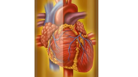 heart drugs and blood medicine to treat the human heart organ in a pharmaceutical pill bottle showing the concept of prescription drugs therapy and research in hospital care for health and a healthy cardiovascular circulation of the body.
