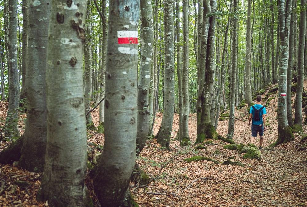Hiking between Marana and Montefalcone