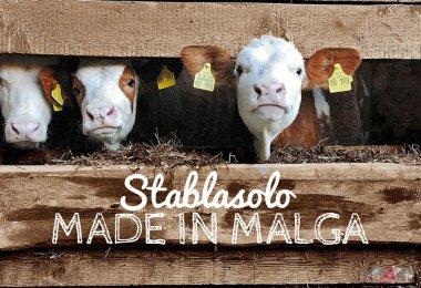 stablasolo-made-in-malga-trentino