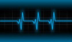 heart rate snuggery