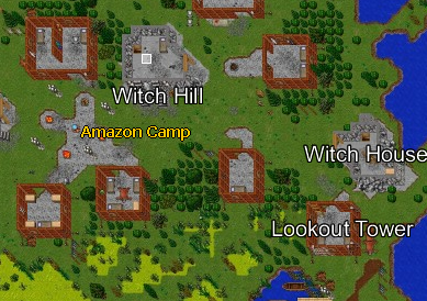 Amazon Encampment Map.jpg