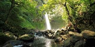 Goedkope vliegtickets Costa Rica