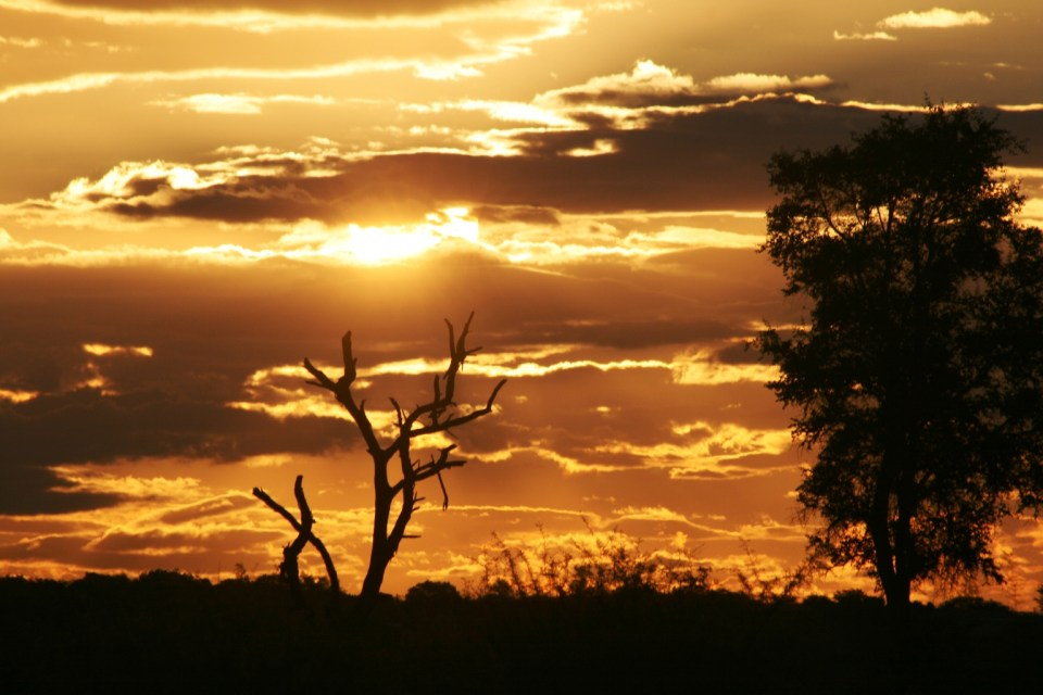 Kruger National Park: Classic African Sunset