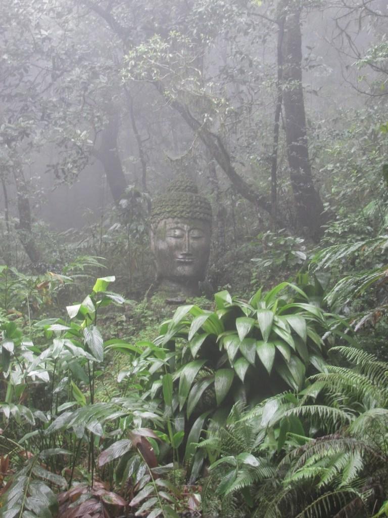 Coorg: Buddha Garden at Taj