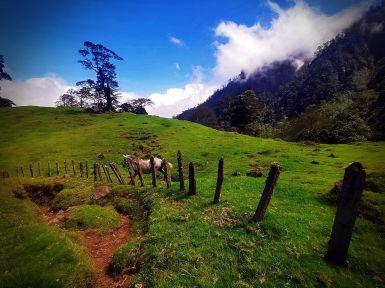 Caminata Hiking a la Catarata las Peñas