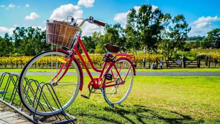 ecomobilité - vélo et paysage ensoleillé