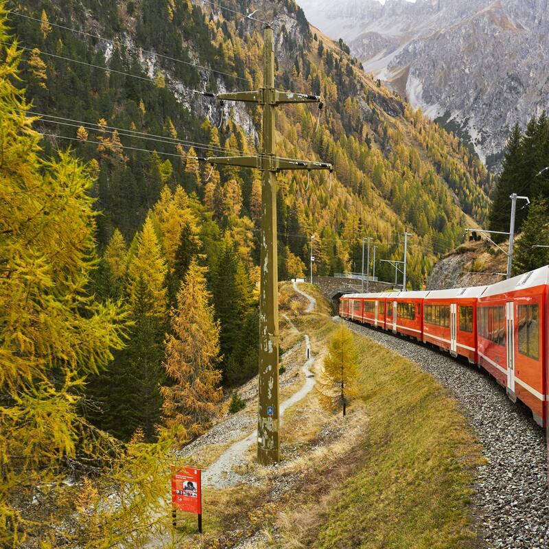 train et paysage de montagne
