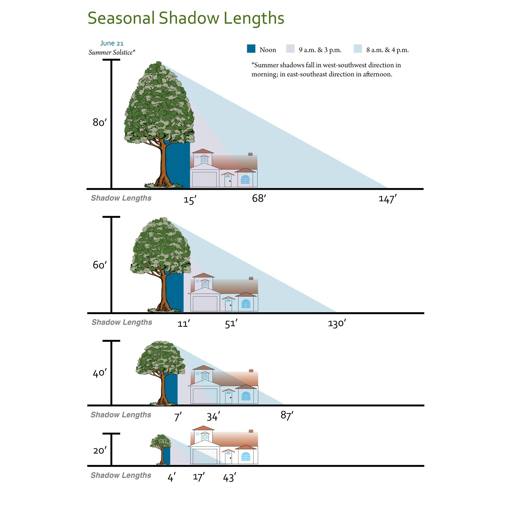 Shade Tree Shadow Lengths