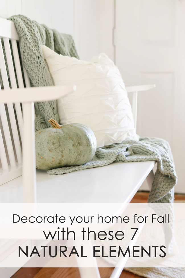 Decorate for Fall with these 7 natural elements.