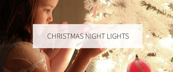 CHRISTMAS NIGHT LIGHTS TOUR