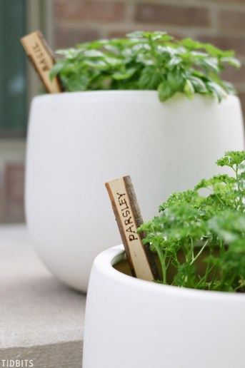 DIY Natural Wood Plant Markers