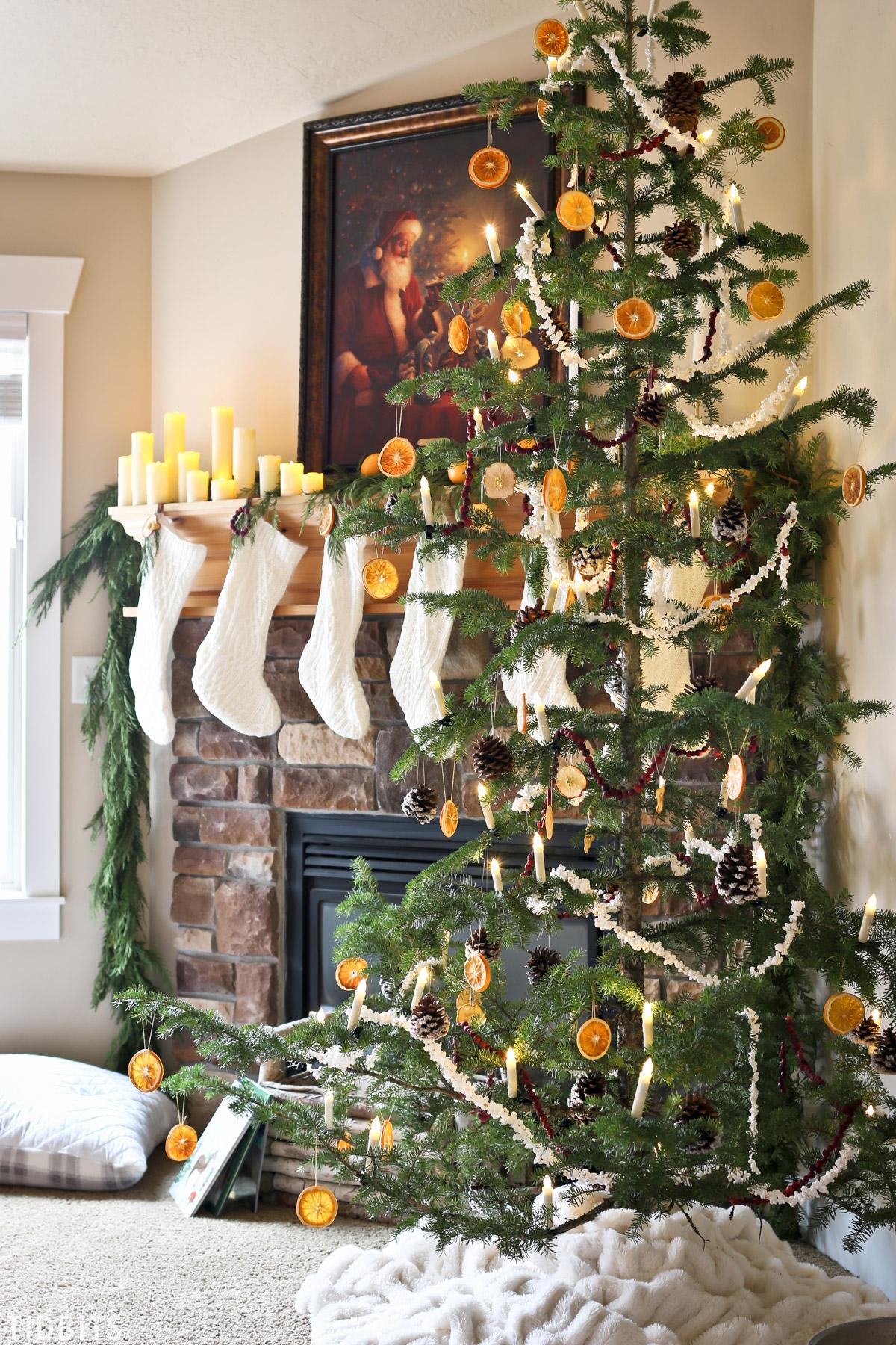 Natural Christmas Decorations Tidbits