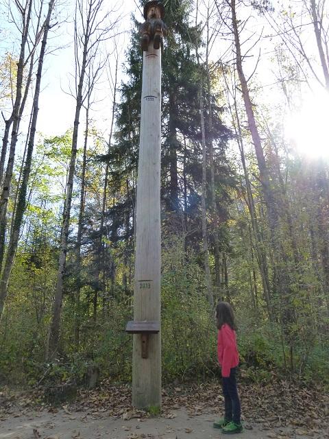 Auwaldpfad-Hochwassermarken