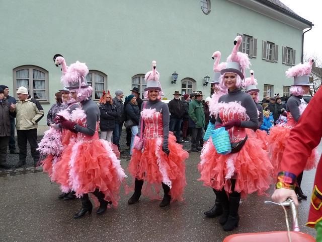Faschingsumzug Obergünzburg -Flamingos