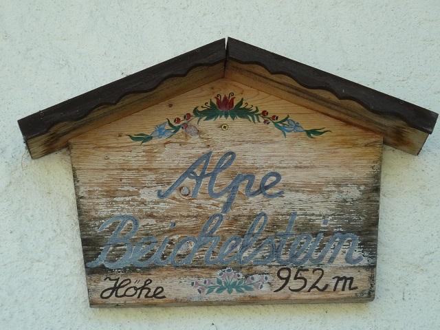 Rundwanderung zur Alpe Beichelstein über den Senkelekopf