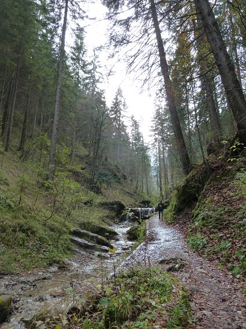 Wanderung auf die Alpspitz bei Nesselwang - am Beginn des Wasserfallwegs