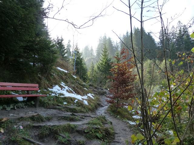 Ruhebank am Wanderweg auf die Alpspitz