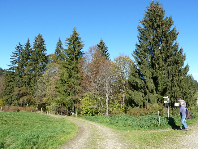 Wanderwegkreuzung in der Adelegg