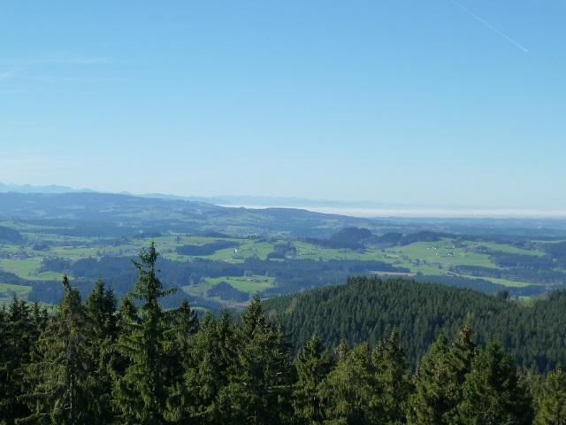 Schwarzer-Grat-Bodenseeblick