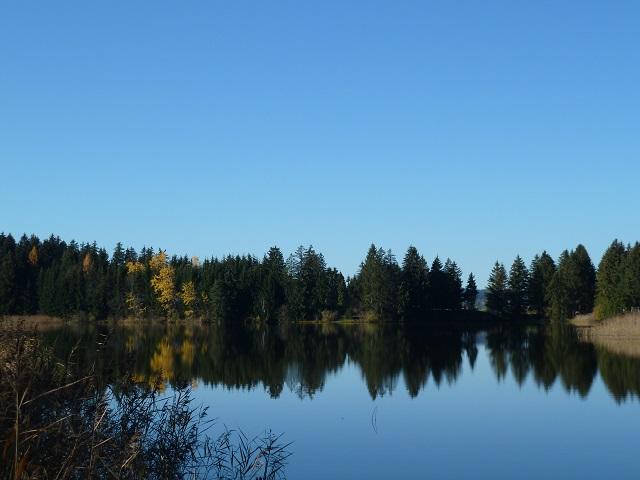 der Hegratsrieder See in der Nähe des Forggensees