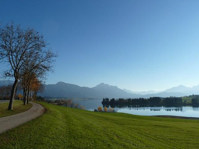 Radweg am Forggensee im Herbst