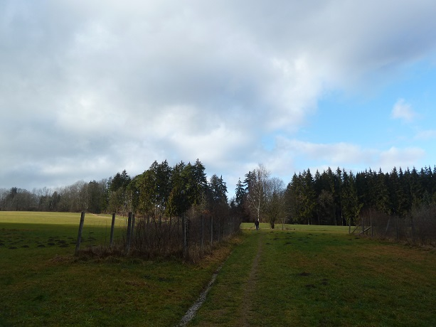 Rundwanderweg-Kemnat-5