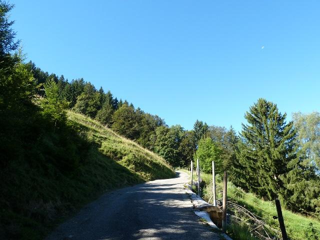 Alpsee Bergwelt Aufstieg