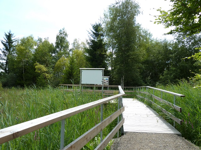 Holzsteg und Beobachtungsplattform im Benninger Ried