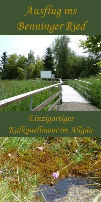 Besuch im Benninger Ried im Unterallgäu