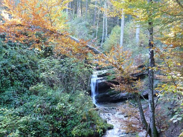 Bergbach am Lustigen Wanderweg bei Kranzegg