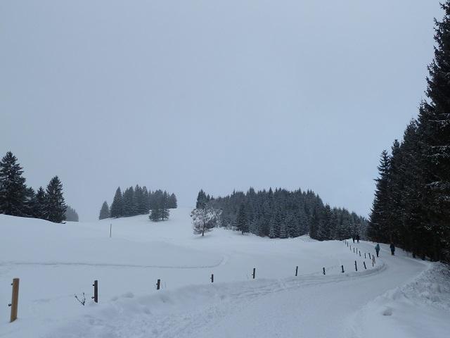 Verschneite Winterlandschaft am Buchenberg im Allgäu