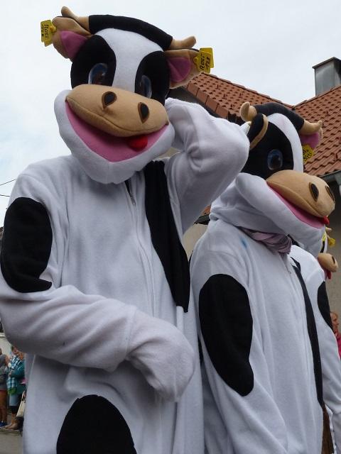 Tausendfüßler Ronsberg 2017 Ollarzieder Kühe