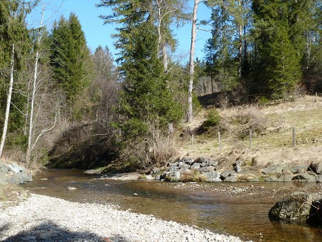 Der Waldbach bei Görisried