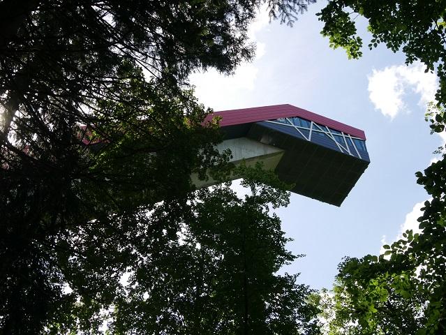 Drachenkopf im Wald am Freibergsee