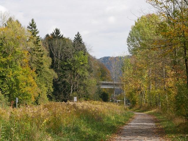 Der Iller-Radweg bei Immenstadt neben der Bahnstrecke
