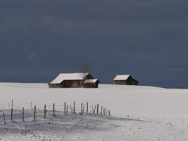 Farbkontrast - weißer Schnee und blauer Himmel #FopaNet