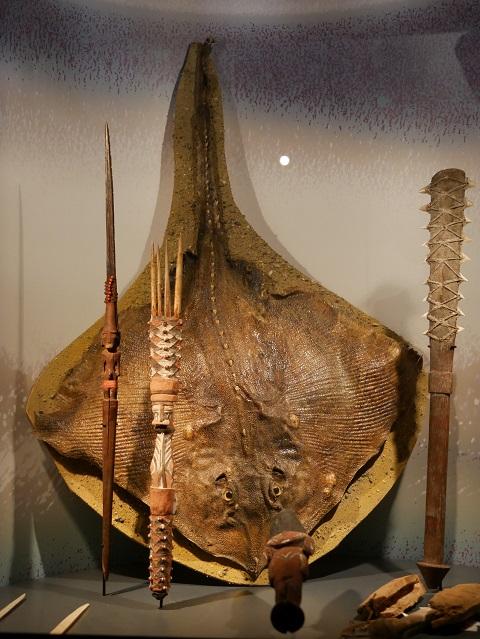 Mantarochen und Waffen - Artefakte aus der Südsee