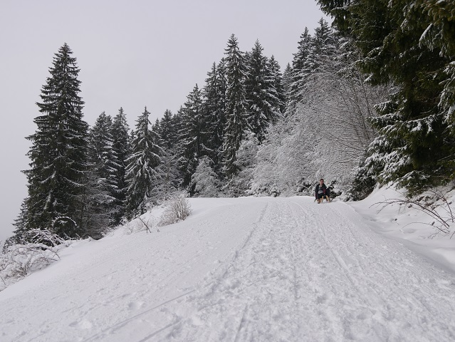 Winterweg zur Gundhütte mit Rodler
