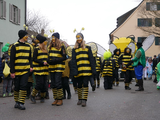Günztal-Bienen auf dem Faschingsumzug Obergünzburg 2018