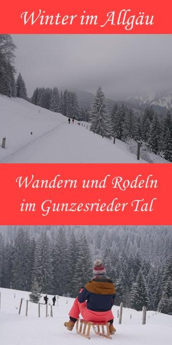 Rodeln im Gunzesrieder Tal - Pin