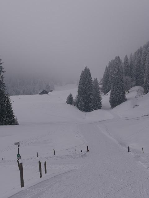 Winterwandern im Gunzesrieder Tal - Abzweigung Richtung Alpe Mittelberg