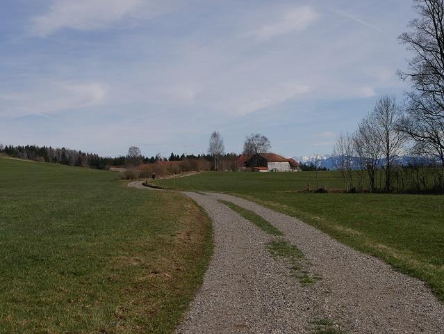 Iller-Wanderweg mit Blick auf Maierhof mit Alpenpanorama