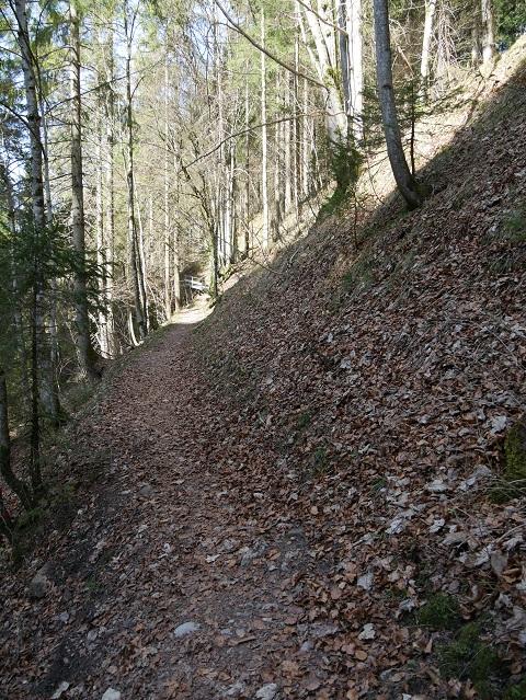 Wanderweg zur Ruine Nesselburg
