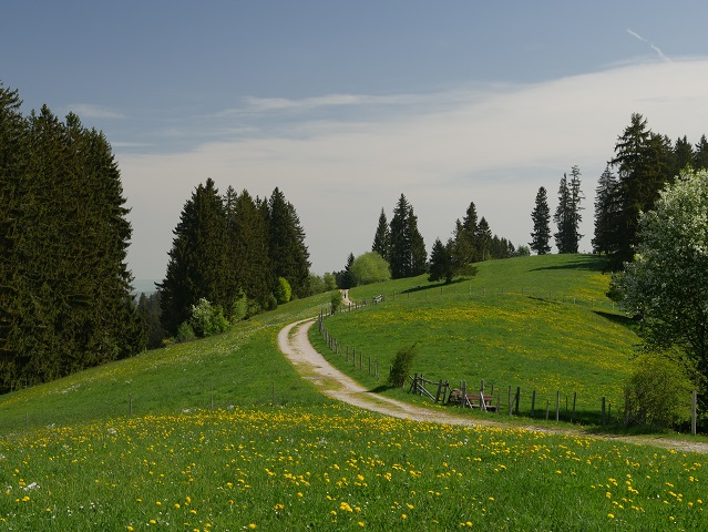 Auf dem Panoramaweg Oy-Mittelberg unterwegs